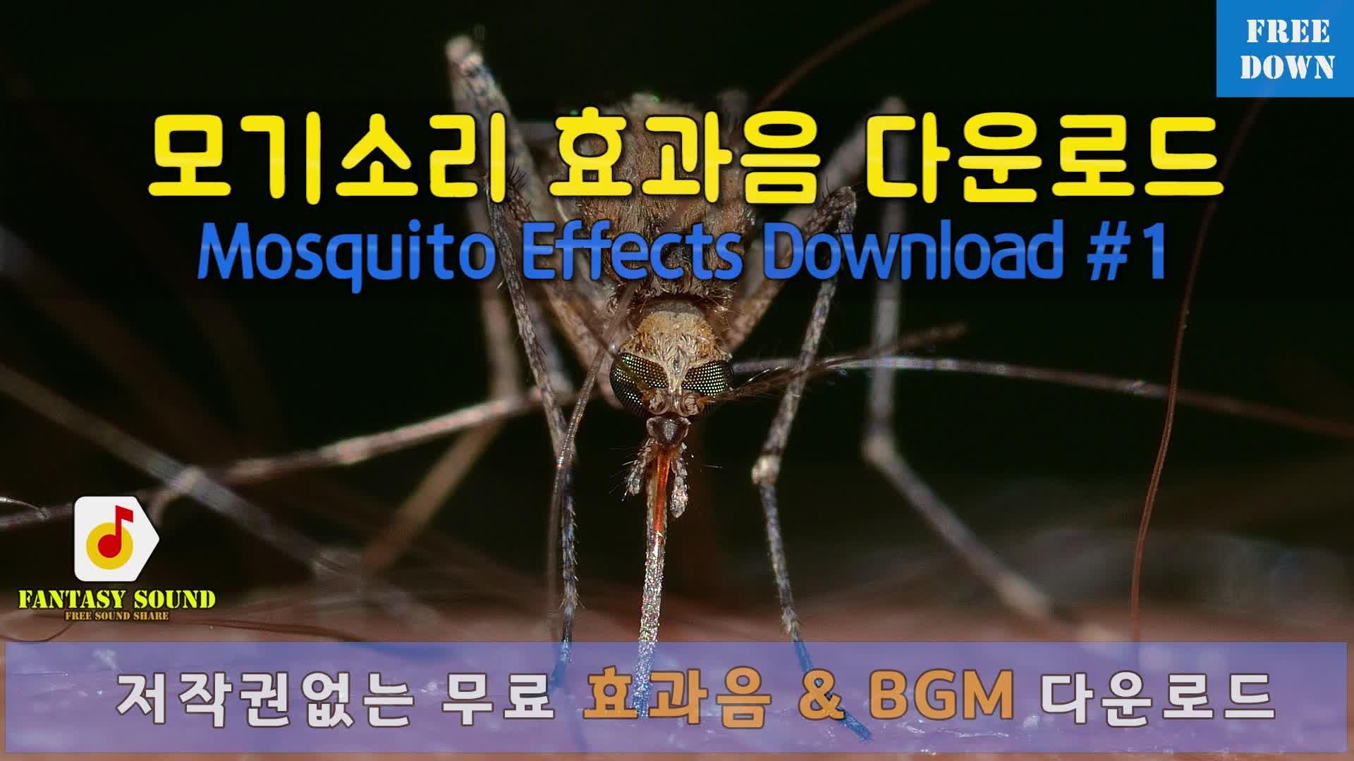 시끄러운 모기소리 효과음 mosquito sound effect free - 동영상